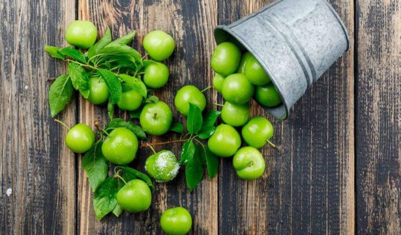 Yazın En Güzel Meyvesi Yeşil Erik Faydaları Nelerdir?